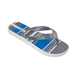 Ipanema Surf Temas AD - grey/grey/blue