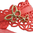 IPANEMA GB BUTTERFLY THONG - Red/Red